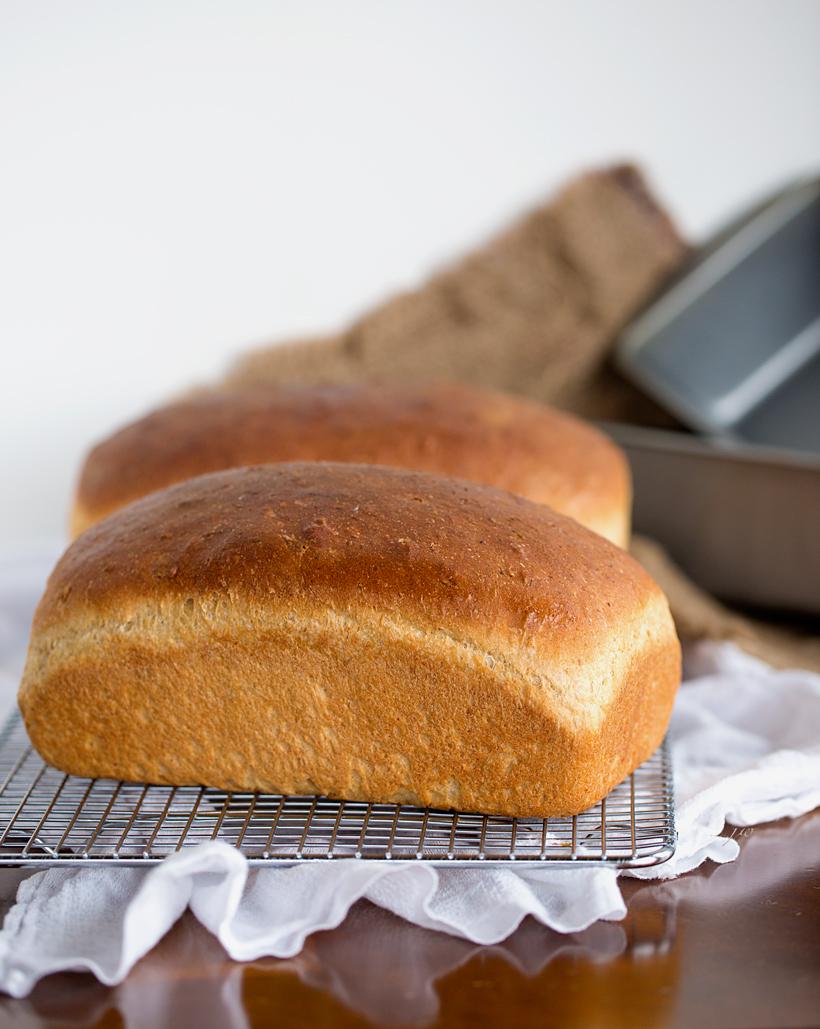 Honey Wheat or Oatmeal Sunflower Seed Bread